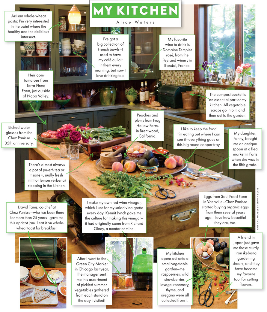 Alice waters kitchen