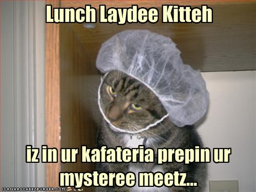 cat prepares funny lunch