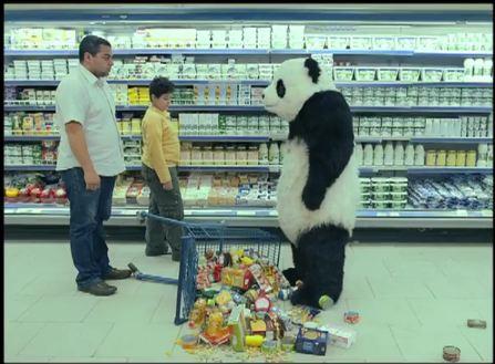 panda cheese, don't say no to the panda